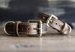 Personalized Leather Dog Collar - Brown
